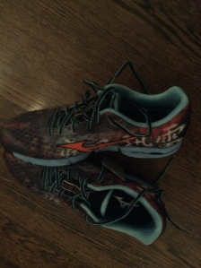 Excited to try my Mizuno Wave Hayate trail shoes.